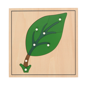 Buy HABA Botany Leaf Puzzle Montessori Material - GiftWaley.com