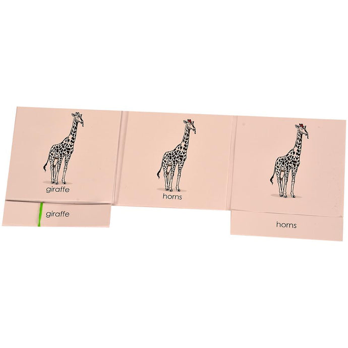 Buy Kidken Montessori Nomenclature Learning Cards - Giraffe - GiftWaley.com