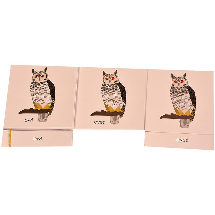 Buy Kidken Montessori Nomenclature Learning Cards - Owl - GiftWaley.com