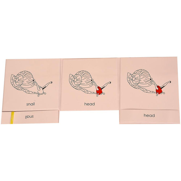 Buy Kidken Montessori Nomenclature Learning Cards - Snail - GiftWaley.com