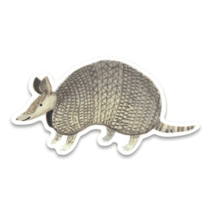 Armadillo Sticker
