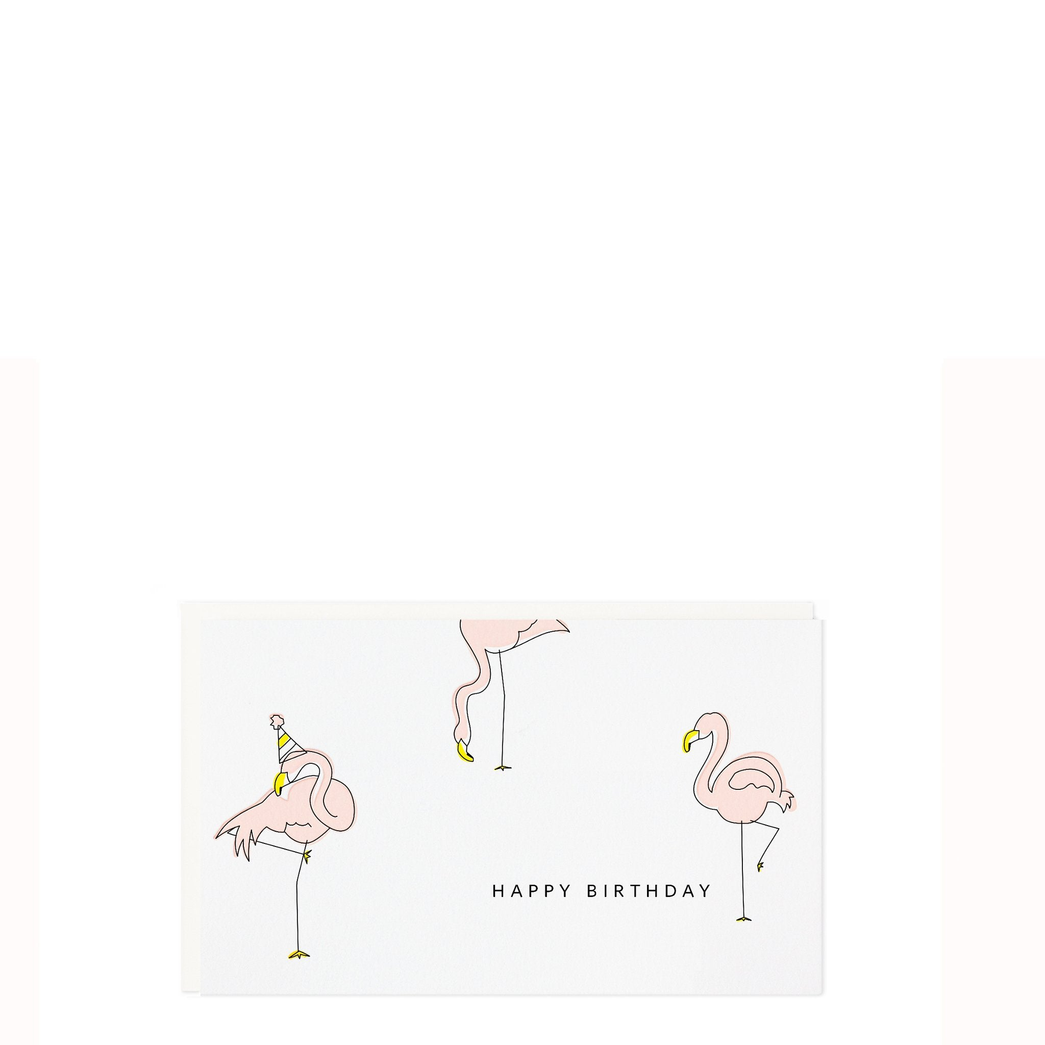 Birthday Flamingo Enclosure Card, Ramona & Ruth