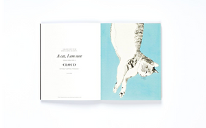 The Book of Cat: Cats in Art, Angus Hyland and Caroline Roberts