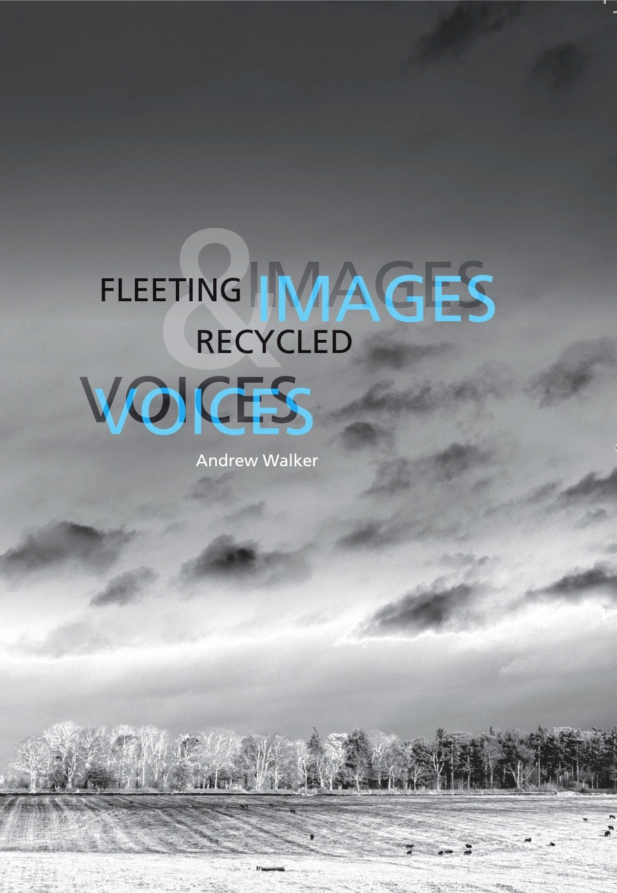 Fleeting Images & Recycled Voices by Andrew Walker