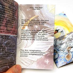 An example of an entry in the Animism Tarot booklets describes The Star as brilliance and transformation.