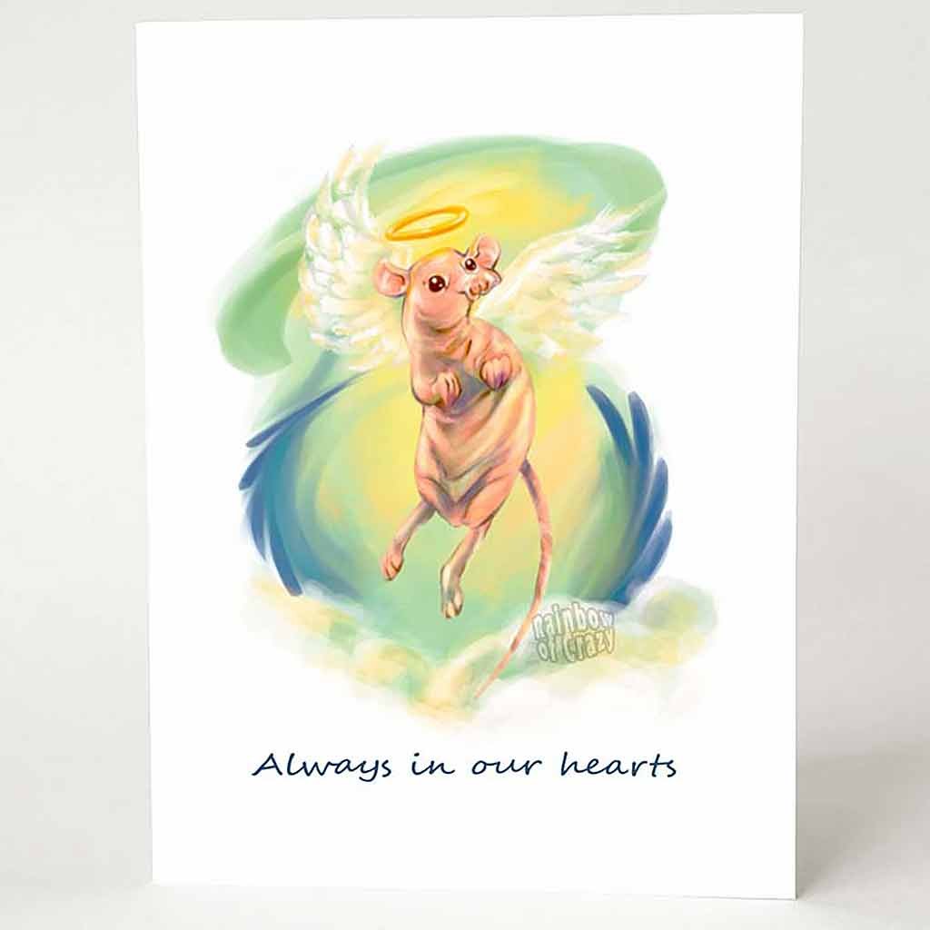 "A greeting card with art of a pet hairless rat with angel wings and a halo, flying in the sky. The card reads, ""Always in our hearts"""