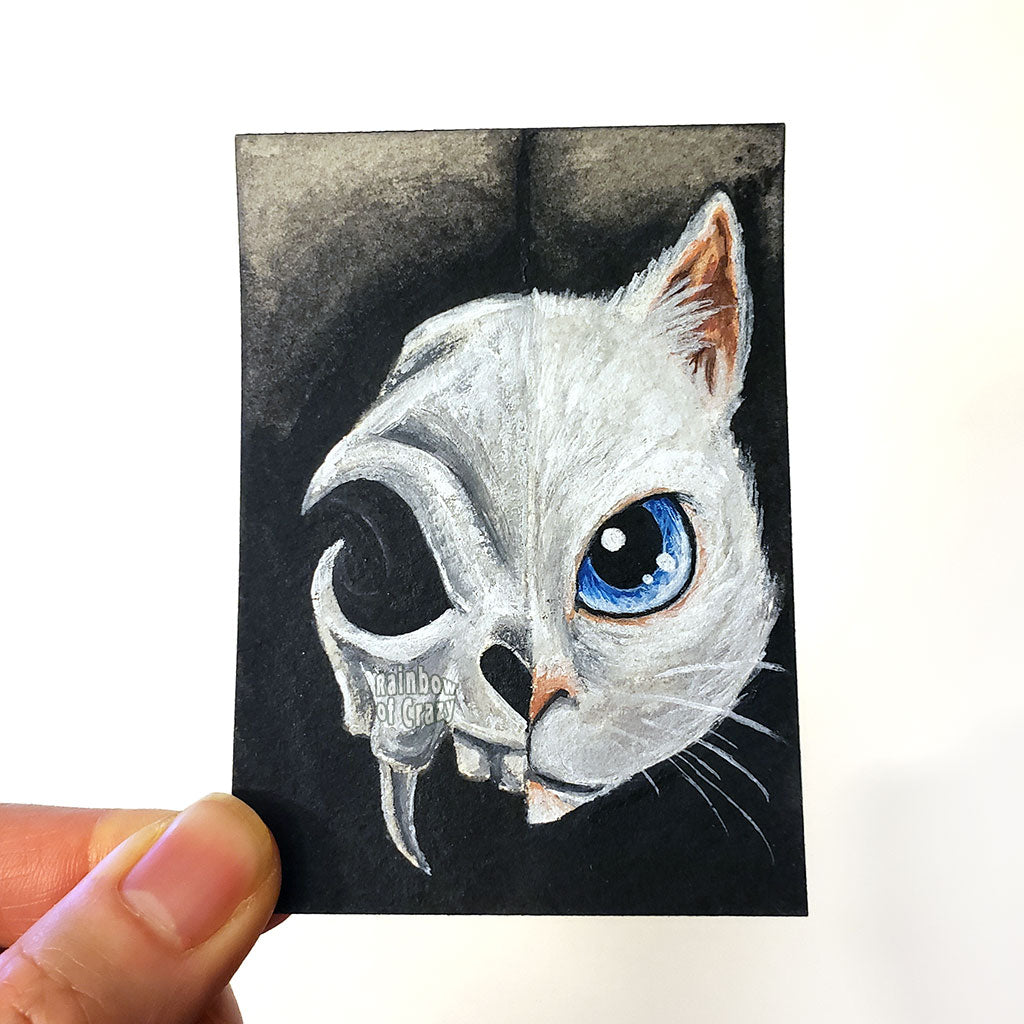 An ACEO painting with the left side featuring an evil looking cat skull, and the right side featuring a blue eyed white cat