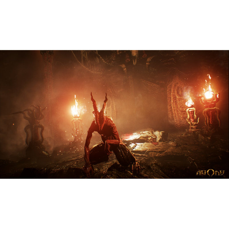 PS4 AGONY ALL (ENG/FR)