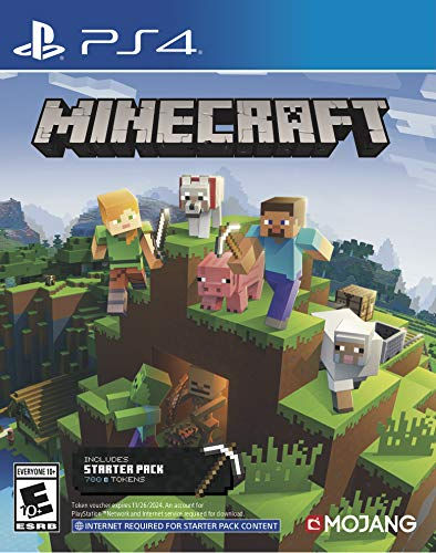 PS4 MINECRAFT (INCLUDES STARTER PACK) ALL