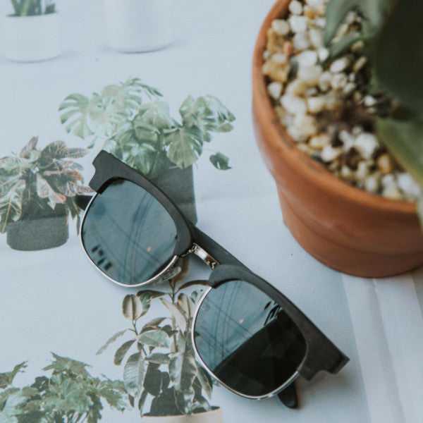 heartwood wood sunglasses