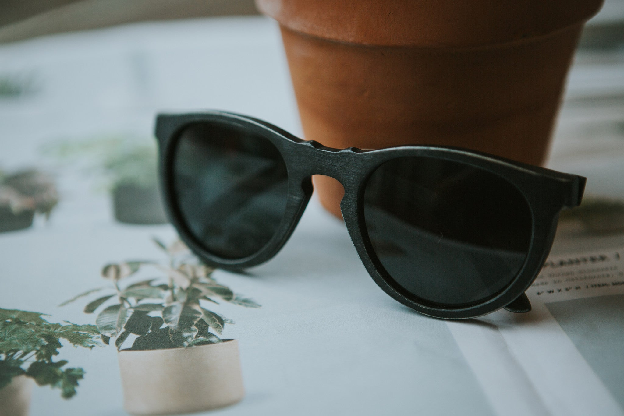 maple wooden sunglasses