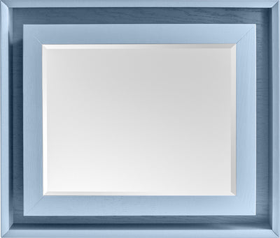 THE FRANKLIN: Shadow Box Mirror- Picture 20x16 Frame