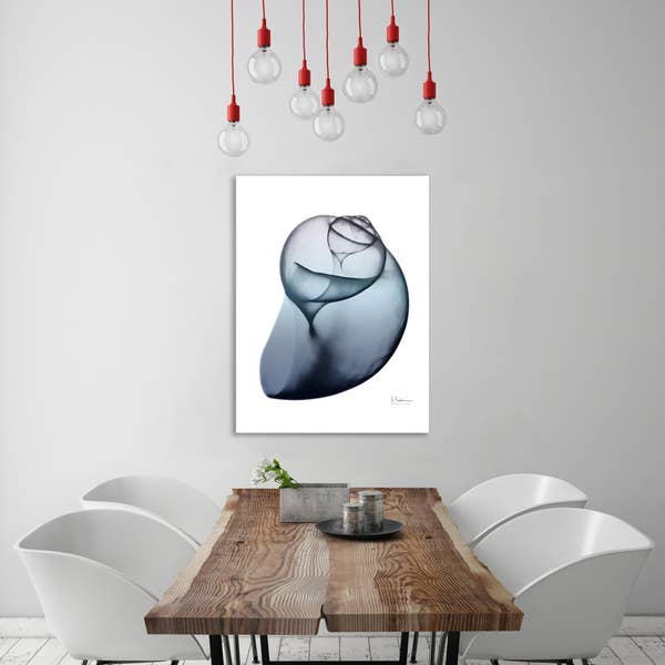 Lavender Snail 3 Gallery Wrapped Canvas Art-Art-humblys.com