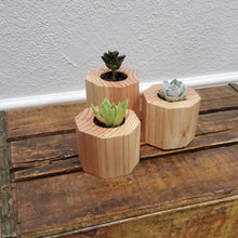Load image into Gallery viewer, Octagon Planters