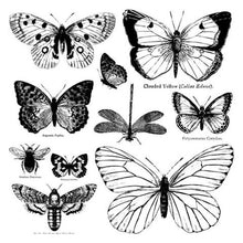 Load image into Gallery viewer, Stamp - Butterflies