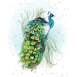 Gift Enclosure Card - Proud as a Peacock