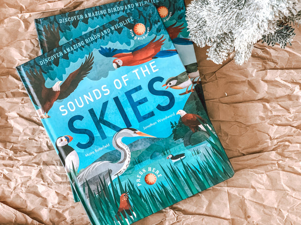 Sounds Of The Skies (Sound Book)