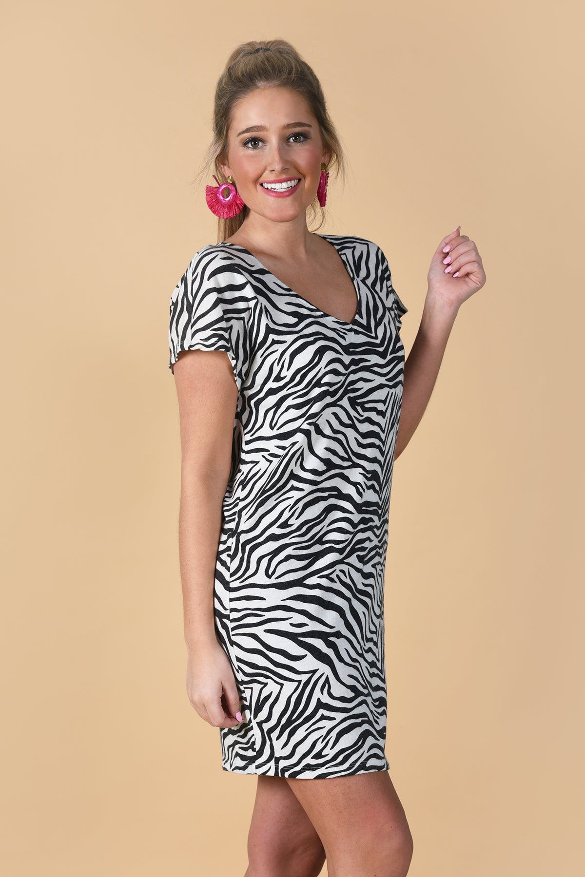 Z SUPPLY THE ZEBRA DRESS