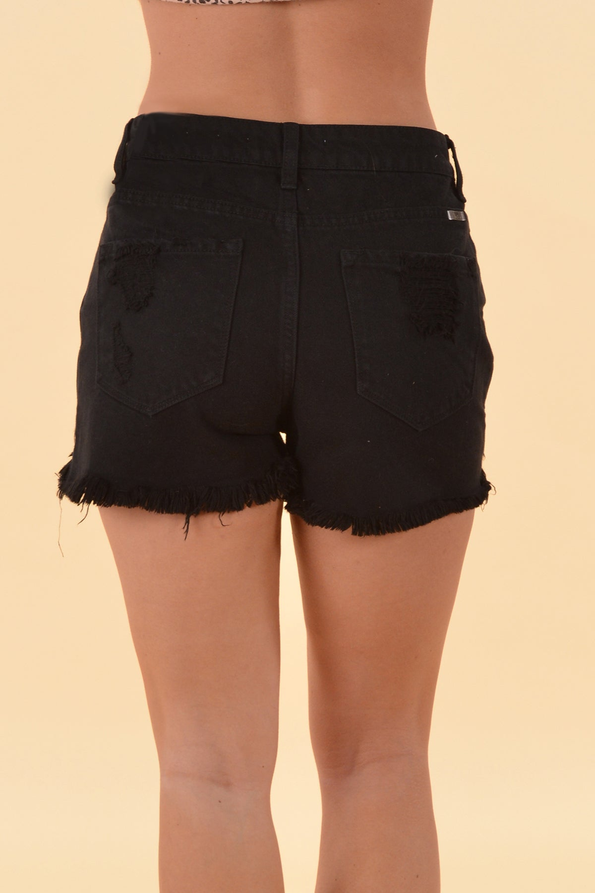 LIZ HIGH RISE SHORTS