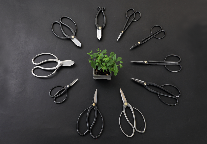 Types of Scissors for Your Bonsai Pruning