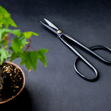 Load image into Gallery viewer, Bonsai Trimming and Care Kit -Twig Bonsai Scissors + Sap Rust Eraser Set