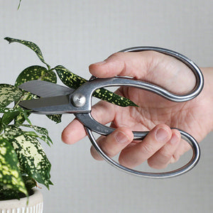 "Stainless Steel Ikebana Scissors 6.5""(165mm)"