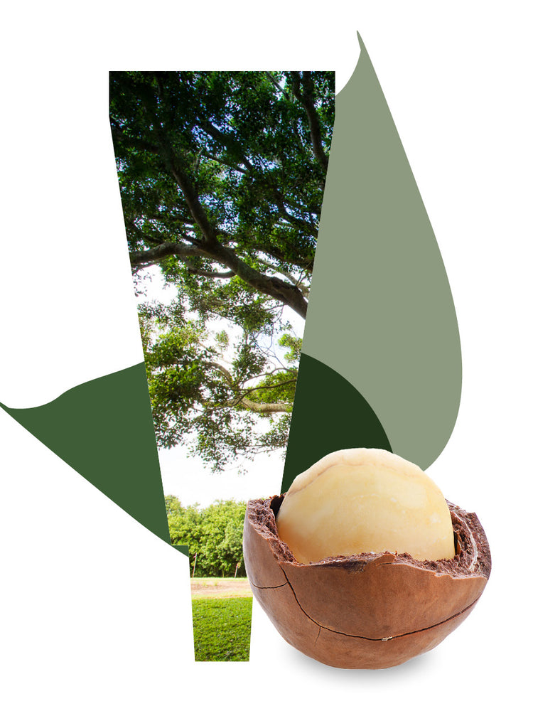Macadamia Body Care