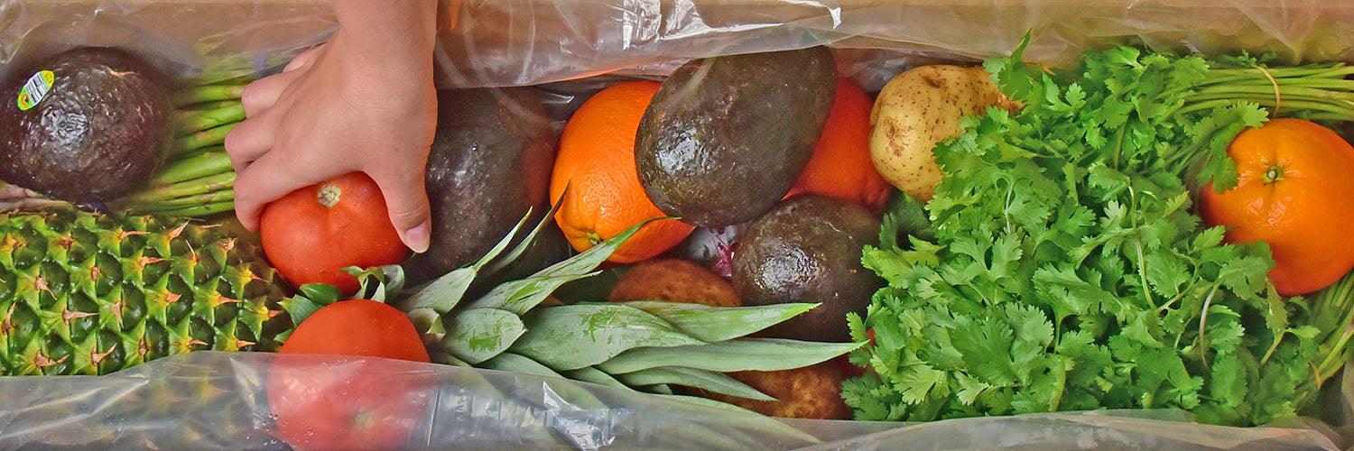 MPS Groceries Produce
