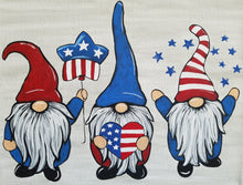 Load image into Gallery viewer, SplashKit (Patriotic Gnomes) - SplashKits