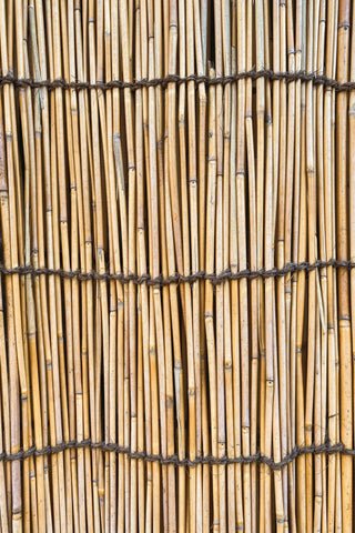 rows of bamboo, bamboo fabrics, benefits of bamboo