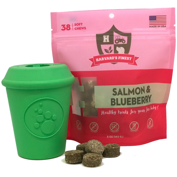 Best dog treats by Harvard's Finest: Salmon & Blueberry combo pack with coffee cup chew toy - Giddy Dogs
