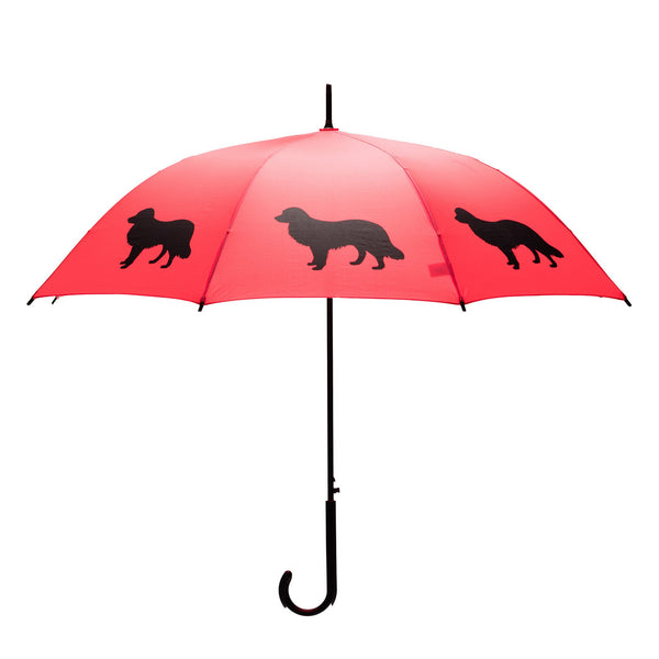 """Border Collie"" dog umbrella - Giddy Dogs"