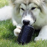 Super chewer dog toys: Black can treat dispenser by Sodapup - Giddy Dogs