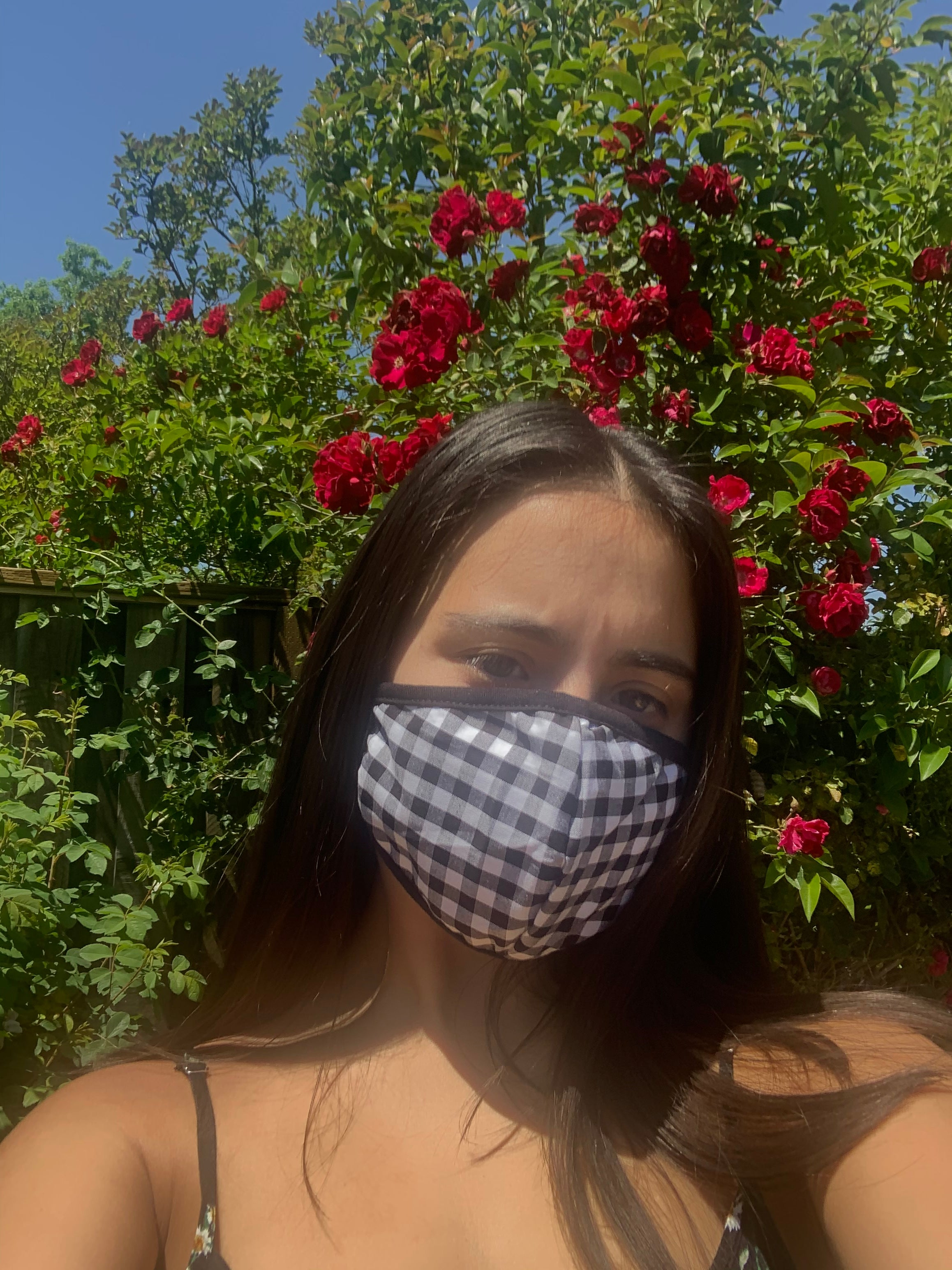 Face Masks Gingham