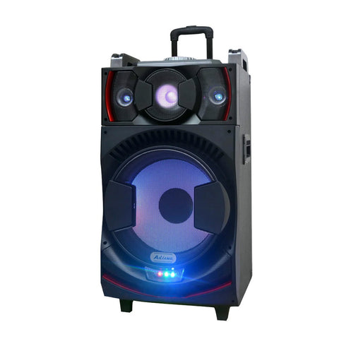 CN-111DJ Speaker Rechargeable speaker with DJ Mixer DJ-1036 + 2 radio microphones