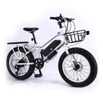 22 inch Electronic Mountain Bike ,250W Cargo Electric Bicycle Sporting Multi Speed Gear EBike| Green