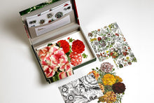 Afbeelding in Gallery-weergave laden, FLOWER PRINTS - briefpost set - Boekenmarkt de Markies