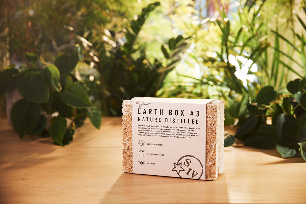 Earth Box #3: Nature Distilled.
