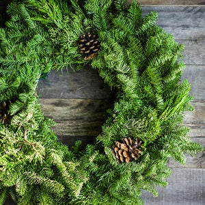 Plain Fresh Fir Christmas Wreath - Various Sizes
