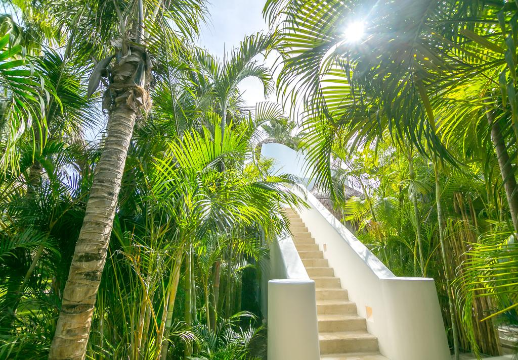 Hotel Esencia, Xpu-Ha - looking up at white stone staircase lined with large palm trees during daytime