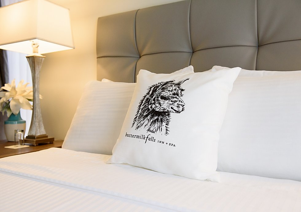 Buttermilk Falls Inn, NY - close up of a hotel bed and bedside table with a llama illustration pillow