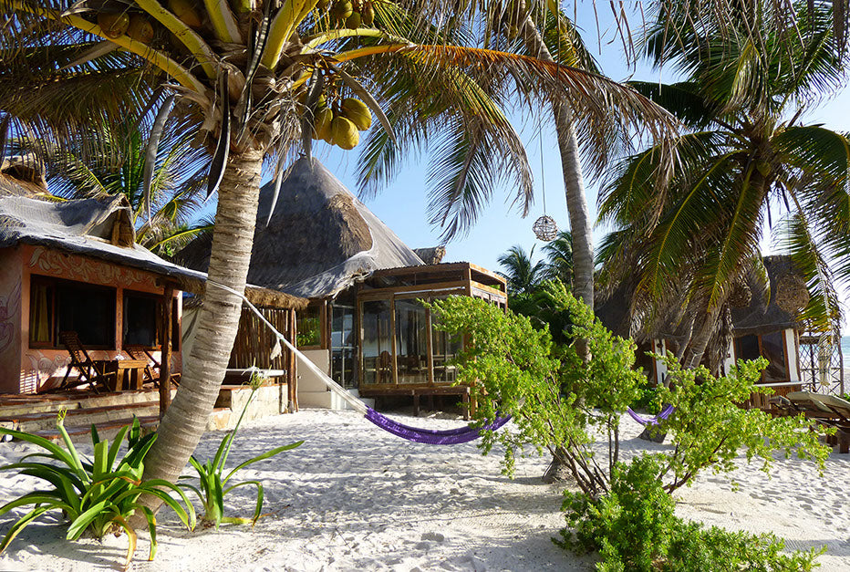 Casa Violeta, Tulum - purple hammock hung on two palm trees with rustic thatch roof buildings behind