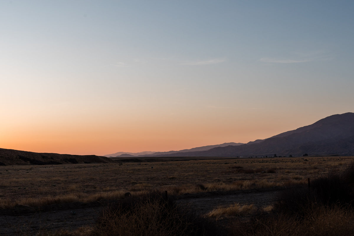 Cuyama Buckhorn, Cuyama - desert landscape with wild brush and mountains in the distance at sunset