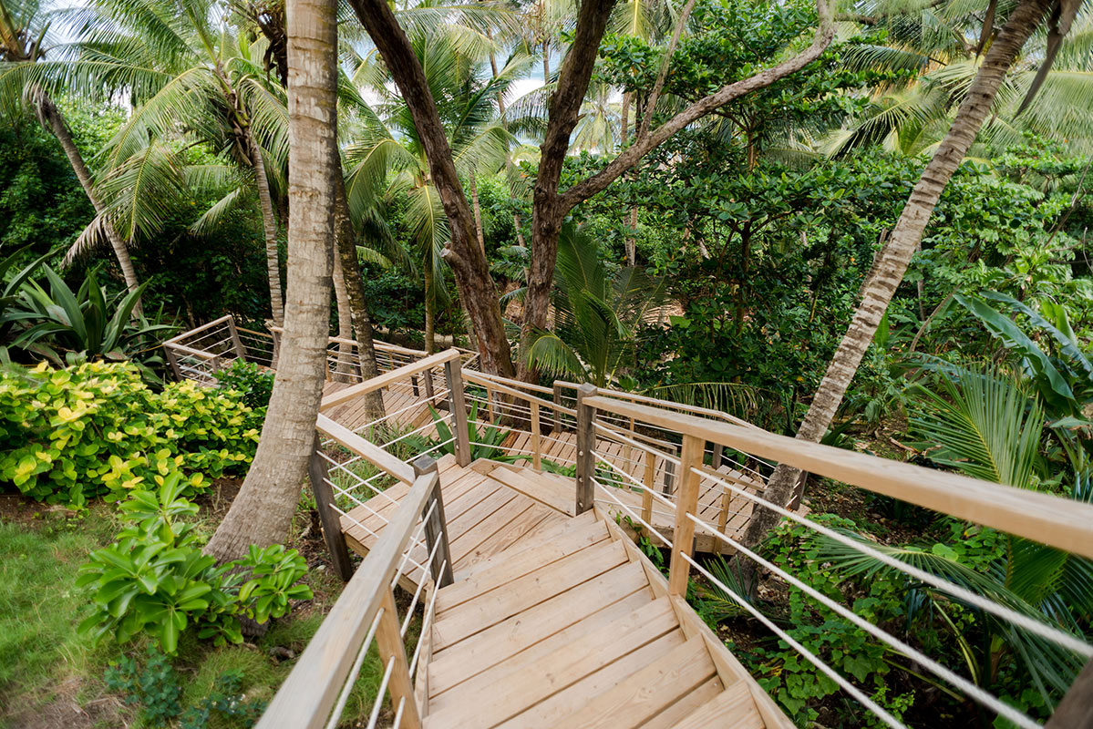 ECO Lifestyle + Lodge, Barbados - rustic wood steps leading down through jungle plants