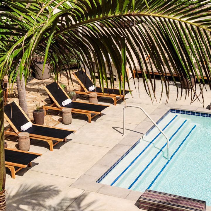 Hotel June, Los Angeles - hotel pool with palm trees and black lounge chairs