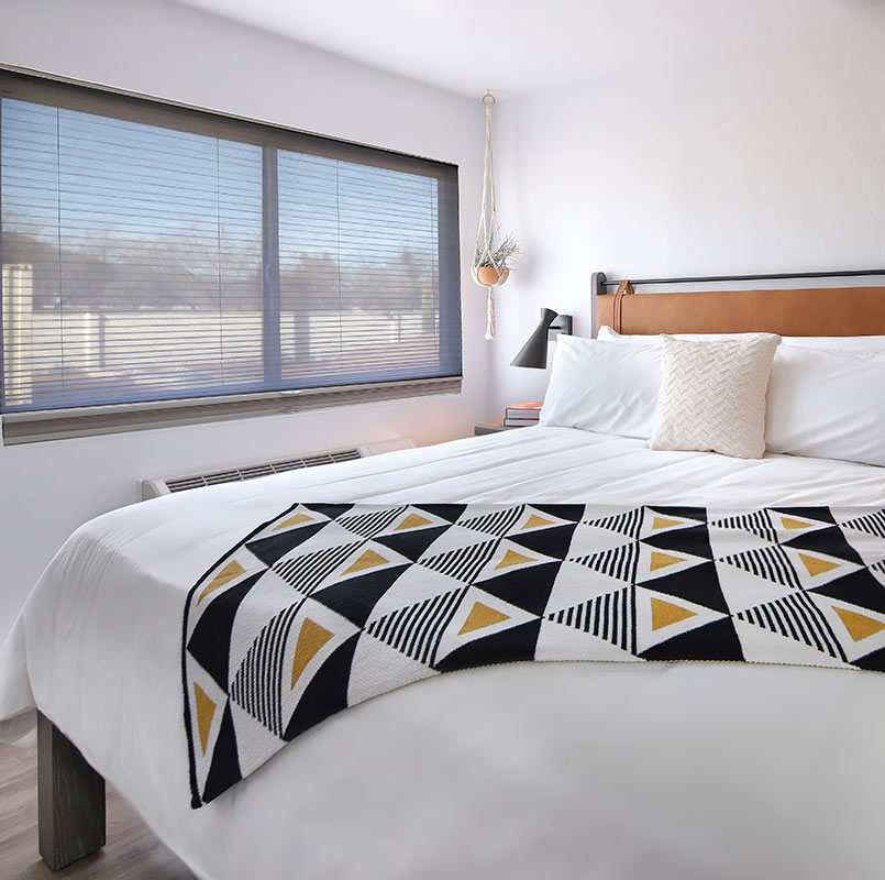 The Tuxon Hotel, Tucson - minimalist white hotel room with hanging planter, large window, and modern chevron blanket on bed