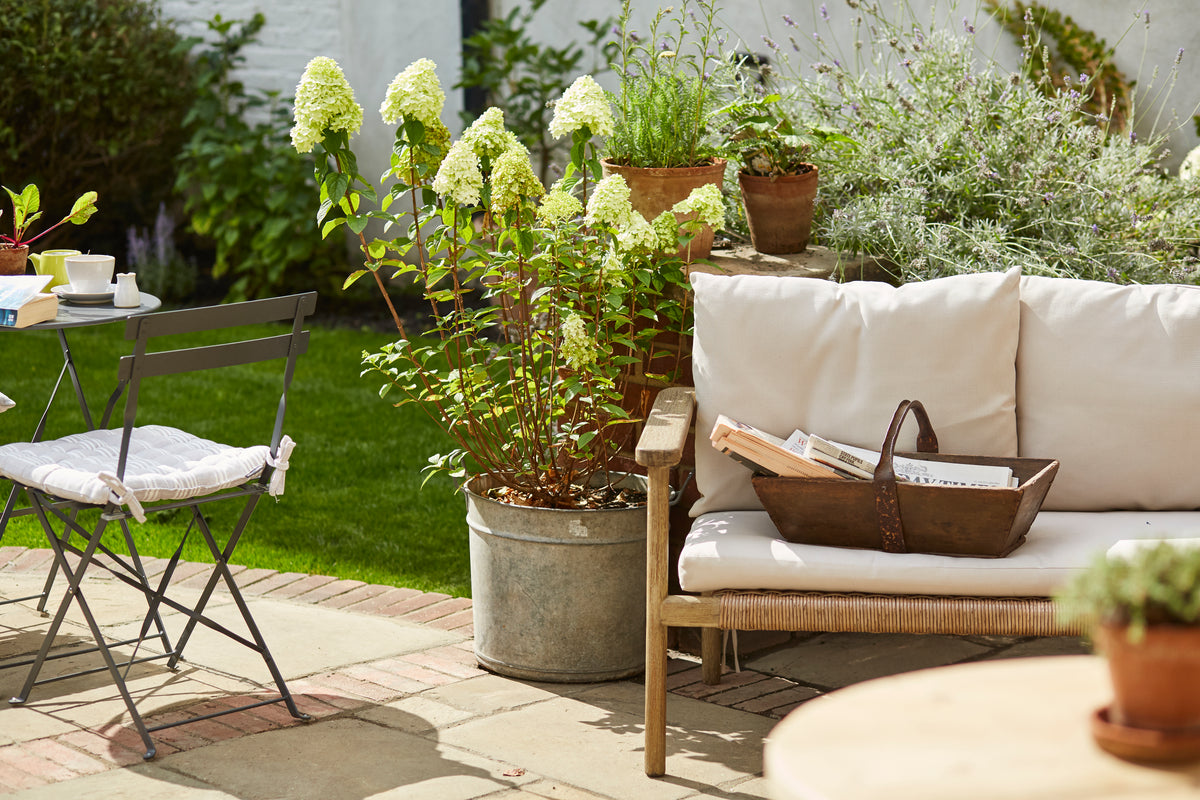 Lime Tree Hotel, London, UK - hotel garden with outdoor couch, potted plants and flowers, and outdoor tables and chairs