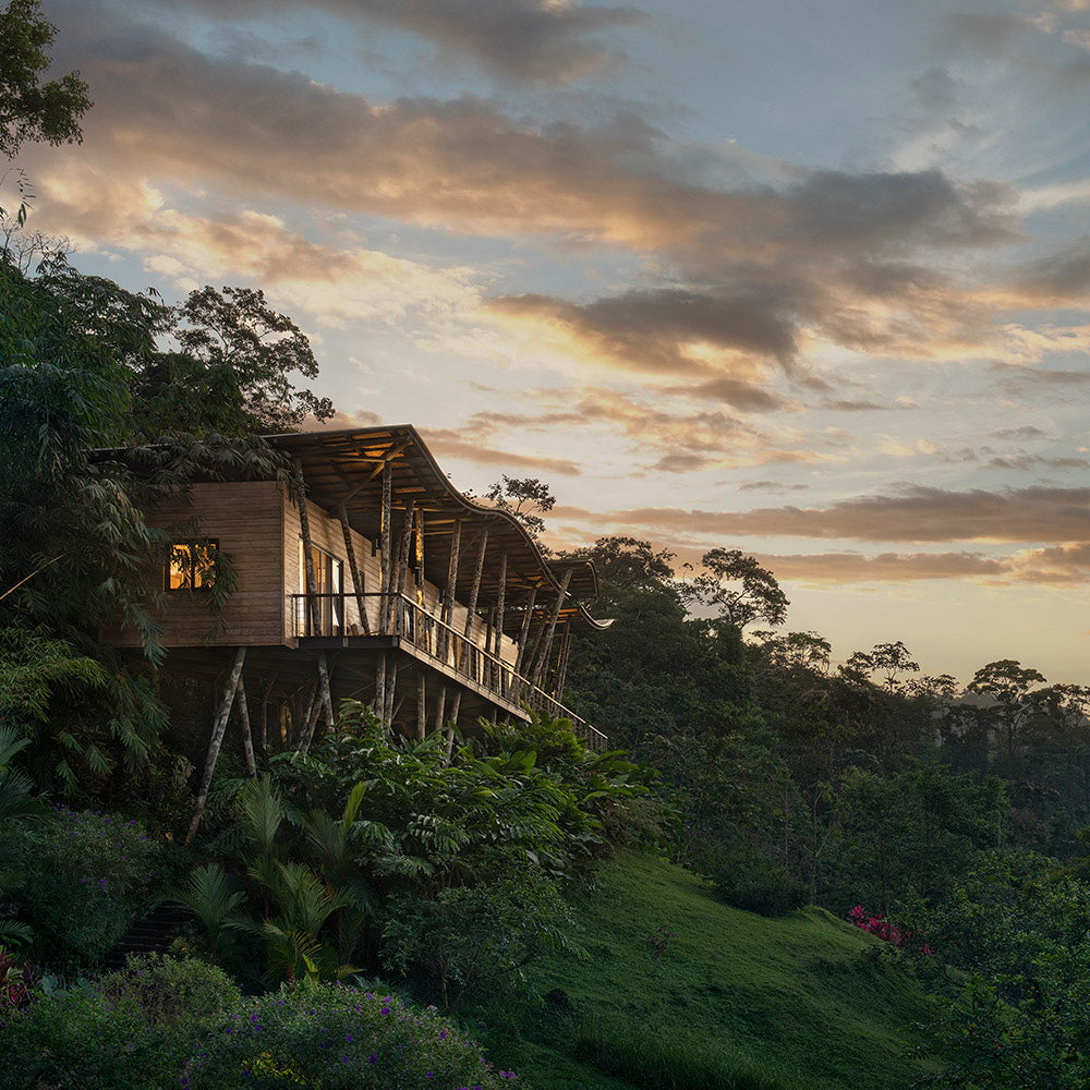 Origins Lodge, Bijagua- naturalistic wooden jungle bungalow overlooking jungle greenery at sunset