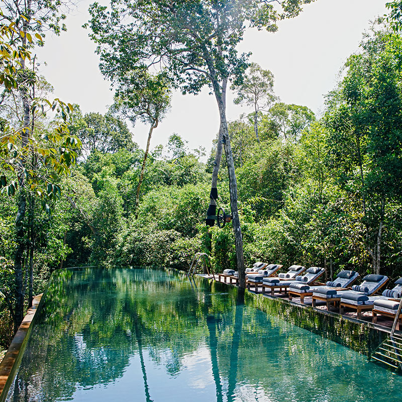 Shinta Mani Wild, Kirirom National Park - resort pool with lounge chairs surrounded by natural jungle greenery