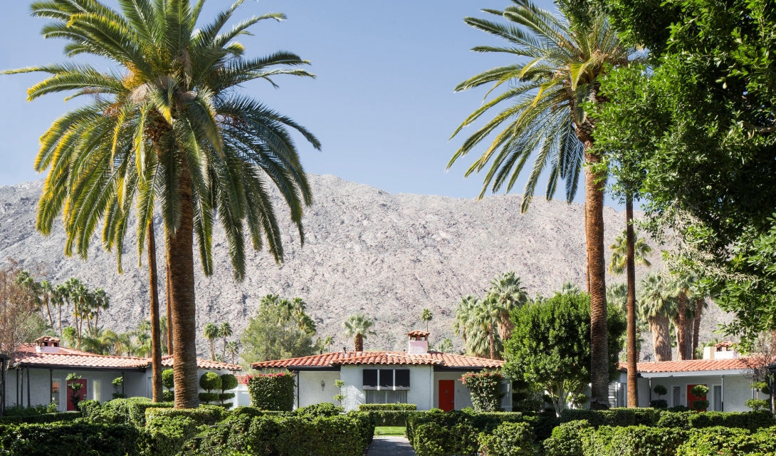 Avalon Hotel & Bungalows, Palm Springs - hotel buildings with manicured hedges, palm trees, and mountains in the background